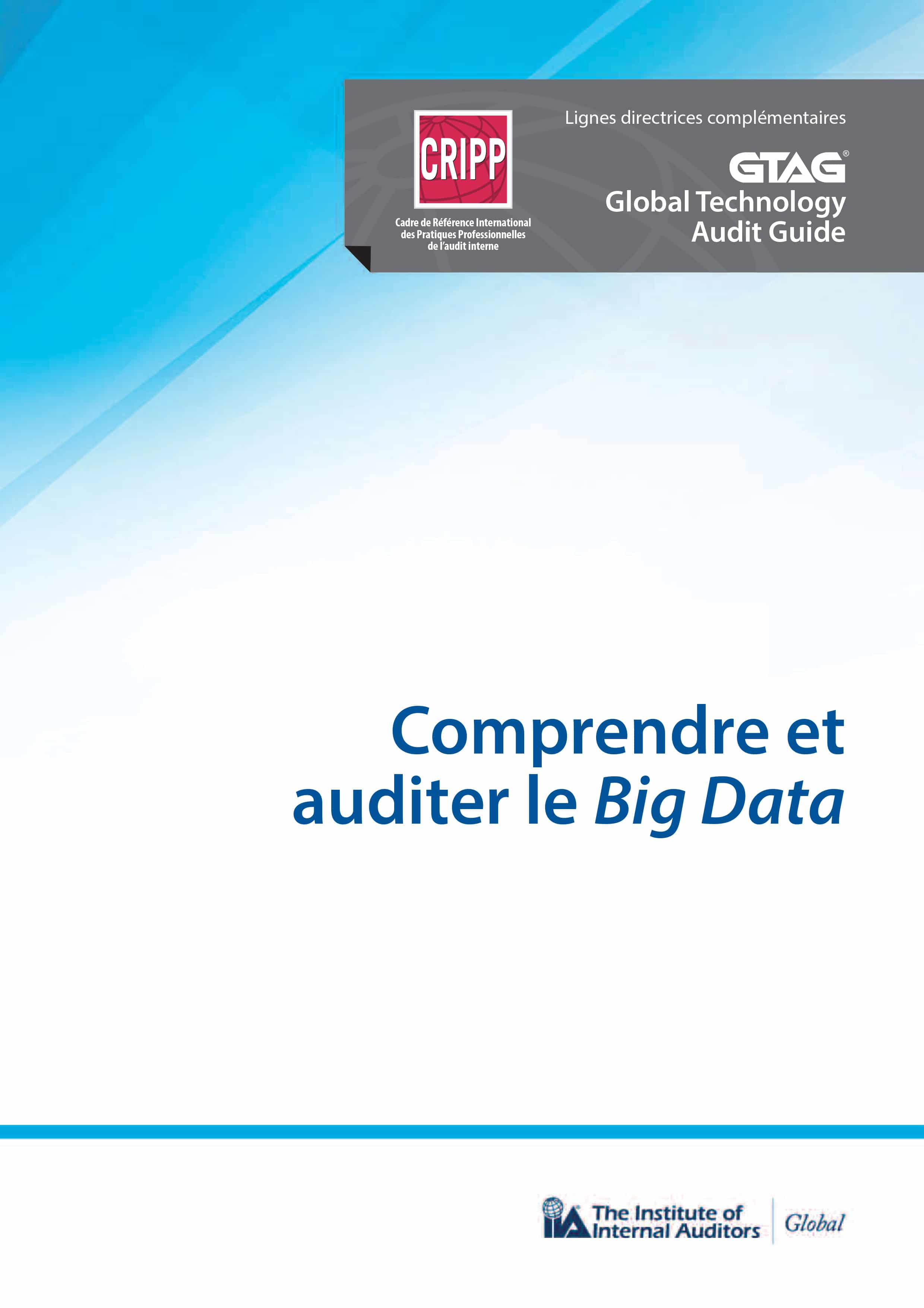 GTAG : Comprendre et auditer le Big data