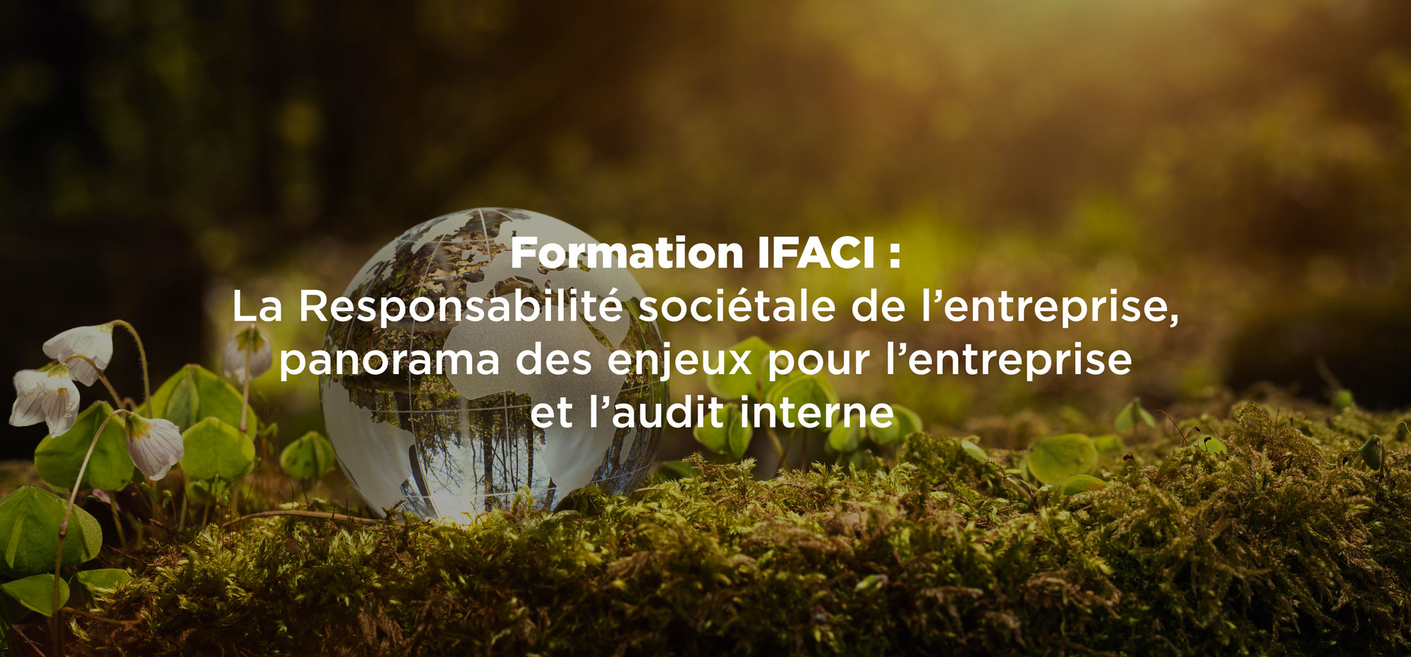 Audit interne et Responsabilité Sociétale de l'entreprise